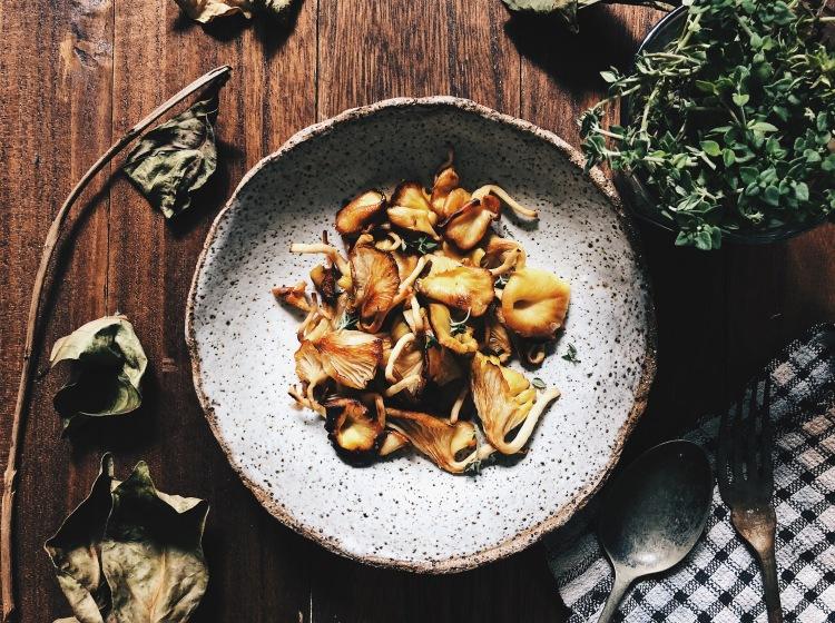 Golden Oyster Mushrooms Kin Yan Agrotech